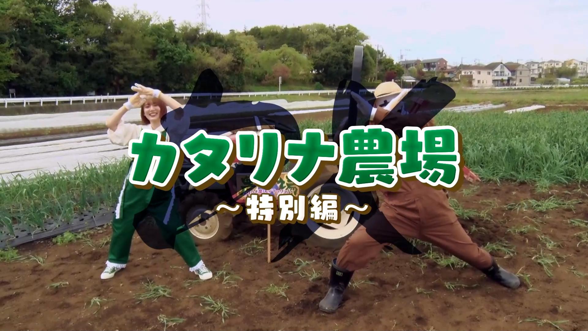 カタリナ農場DX〜特別編〜